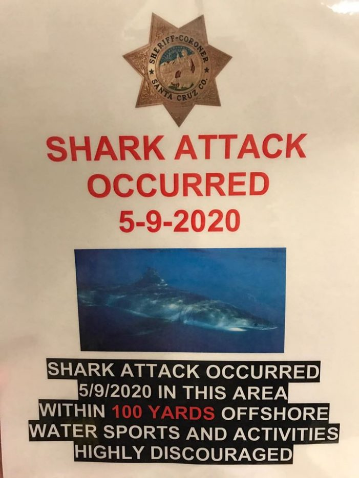 California State Parks Closes Manresa State Beach after Fatal Shark Attack