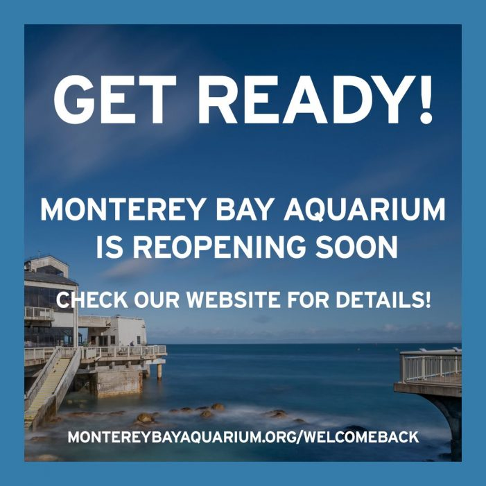 Monterey Bay Aquarium Reopening for Visitors in May