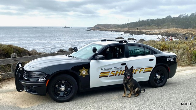 Monterey County Sheriff's Logs for April 28, 29, 30 2021