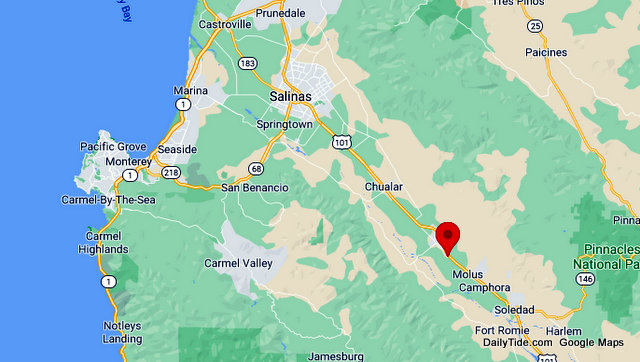 Traffic Update….Puppies on Side of Road Near US 101 & Gloria Road