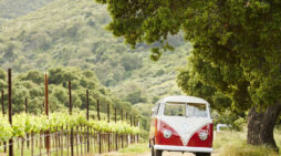 Three Epic Road Trips Through Monterey County, California