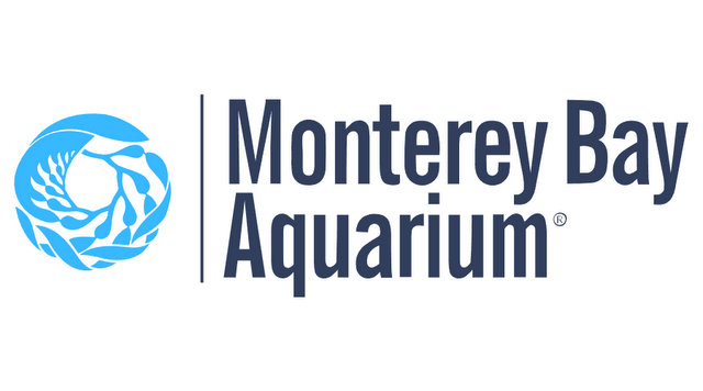 Monterey Bay Aquarium Updates its COVID-19 Precautions & Expands Capacity