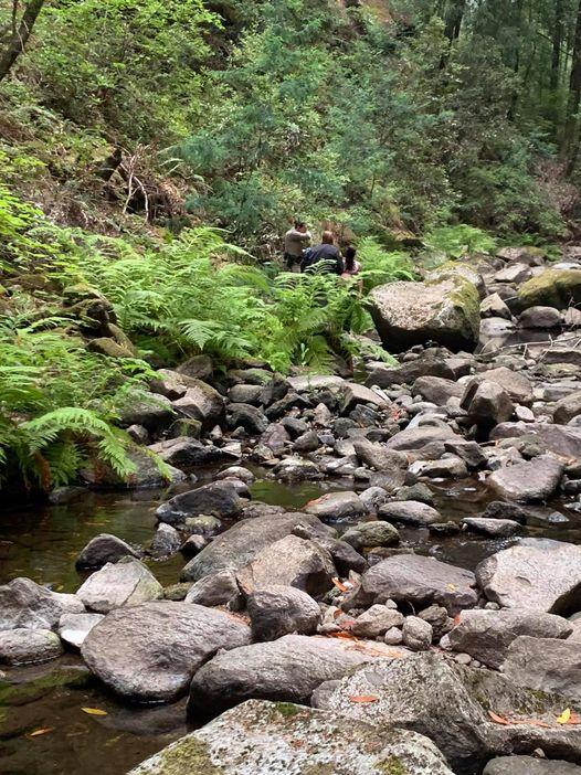 Santa Cruz Sheriff's Deputies Help Man Stuck in Carbonera Creek